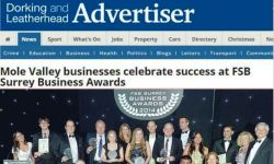 FSB Business Awards Winner Dorking Advertiser