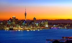 New Zealand Private Investigator